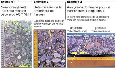 Evaluation morphologique